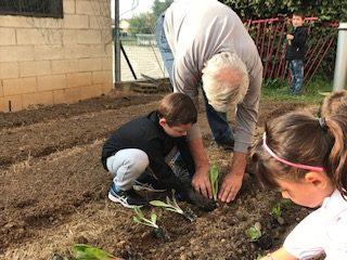 progetto orto alla primaria L'Arca di Legnano